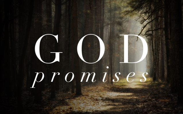 GodPromises.PNG